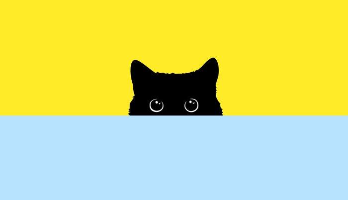 Kitty Pillow Sham