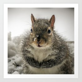 Adorable Praying Squirrel..Feed ME!! Art Print