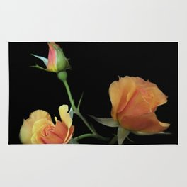 flowers on black - 3 orange rosebuds Rug
