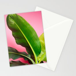 Banana Palm Leaves Pink Background Stationery Cards