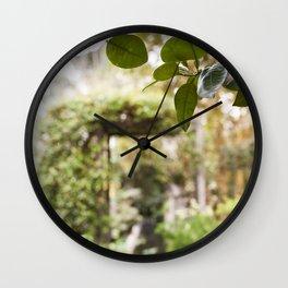 Citrus Above Wall Clock