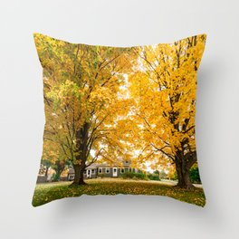 home in vermont Throw Pillow