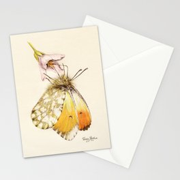 Aurorafalter butterfly Stationery Cards