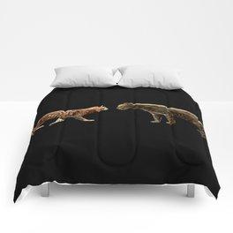 Meet the wild brother Comforters