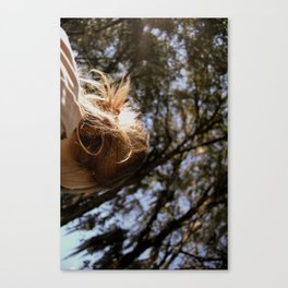 It's Written In the Trees Canvas Print