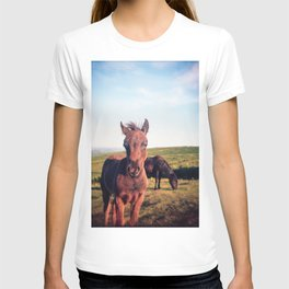 Dartmoor Pony Portrait (2) T-shirt