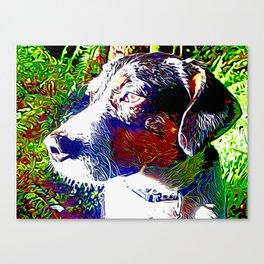 The Truffle Magician Canvas Print