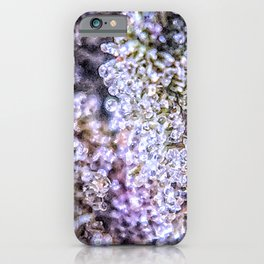 Top Shelf Grand Daddy Purple Close Up Buds Trichomes View iPhone Case