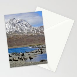 Fur Seals, King Penguins and Snowy Mountains Stationery Cards