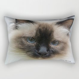 Lucy The Cat 2 Rectangular Pillow