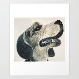 Beagle in Charcoal Art Print