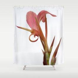 Canna Erebus Shower Curtain