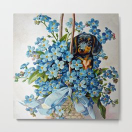Dachshund and Forget-Me-Nots Metal Print