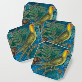 Carolina Parakeet with Cypress, Antique Natural History and Botanical Coaster