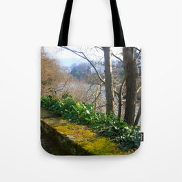 Walk on the River Bank Tote Bag