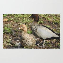 Duck Family Rug
