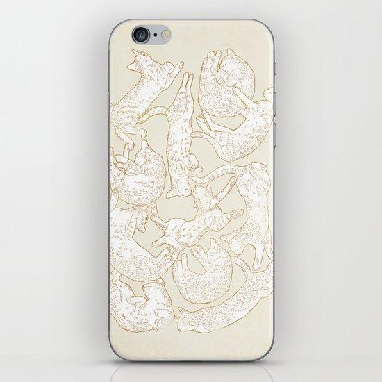 Eleven Sleepy Cat iPhone & iPod Skin