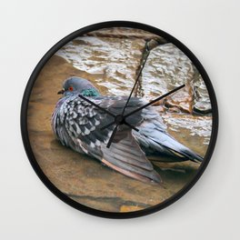 Pigeon in Puddle Photography Wall Clock
