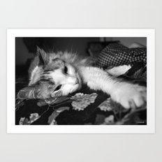 All Wore Out! Art Print