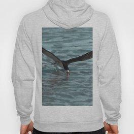 Hungry Black Skimmer Ocean Bird Hoody