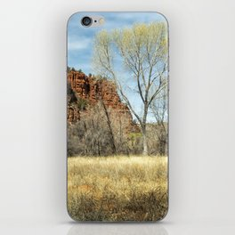 Red Rock State Park Meadow iPhone Skin