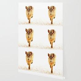 Wait For Me Guys! Hare running #decor #society6 Wallpaper