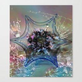 Starcatcher Canvas Print