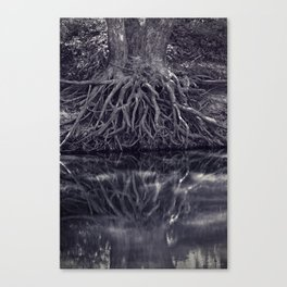 Clinging to the River Bank Canvas Print