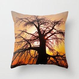 Baobab with evening light - Africa wildlife Throw Pillow