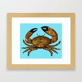 Stone Rock'd Stone Crab By Sharon Cummings Framed Art Print