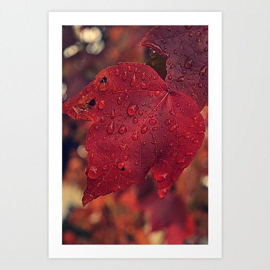 Fall Drops II  Art Print