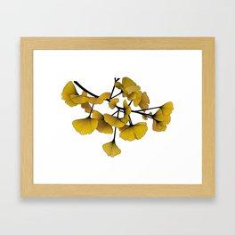 Gingko Yellow Framed Art Print