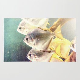Fish Family Rug
