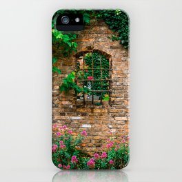 Greener on both sides iPhone Case