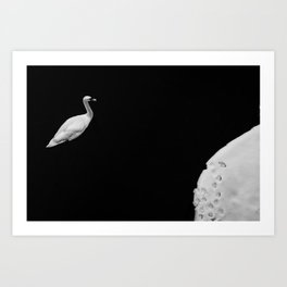 Snow covered lake and swan Art Print