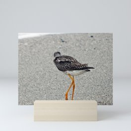 Greater Yellowlegs  Walks Away Mini Art Print