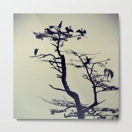 Birds on a Tree Metal Print