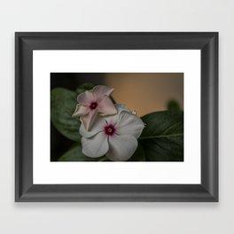 Flower Duo Framed Art Print