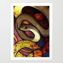Indo-Chinese Rat Snake Art Print