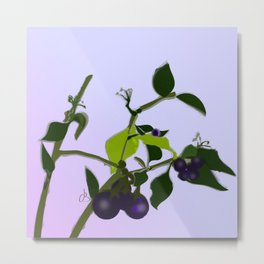 Sketchbook #002 Unfinished Wild Berries Metal Print