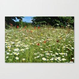 Cambridge in bloom Canvas Print