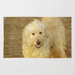 Dog Goldendoodle Golden Doodle Rug