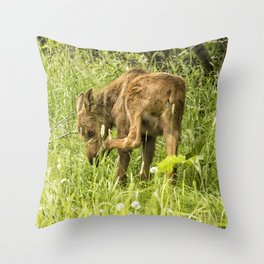 Itchy Nose or Smelly Feet? Throw Pillow