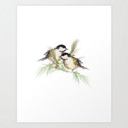 Finch couple  Art Print