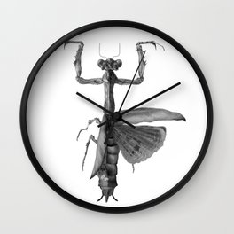 Popa spurca Wall Clock