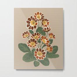 Primula flower pattern  Metal Print