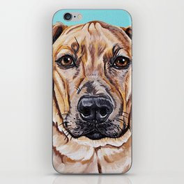 Kovu the Dog's pet portrait iPhone Skin