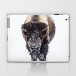 Yellowstone National Park: Lone Bull Bison Laptop & iPad Skin
