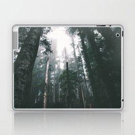 Forest XVIII Laptop & iPad Skin