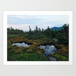 Bog of Eternal Stench Art Print